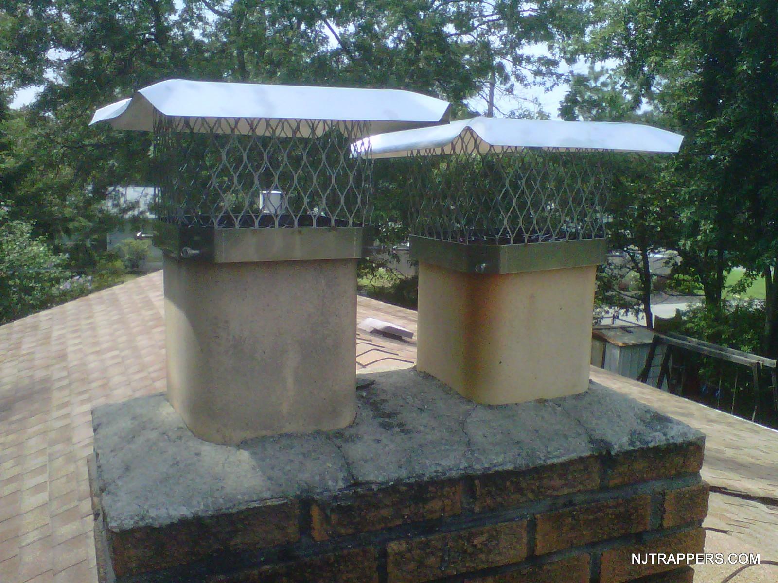 2-chimney caps