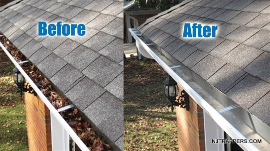 5-gutter-cleaning-before-and-after